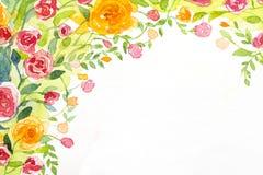 Aquarelle du fond 2 de roses peinte Image stock