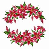 Aquarelle flowers for background, texture, wrapper pattern, frame or border. Lily flower wreath in a watercolor style. Aquarelle flowers for background, texture Royalty Free Stock Photo