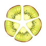 Aquarelle Kiwi Fruit Pulpe et graines juteuses pour la conception d'impression, bannière, affiche, couverture, invitations, salut images libres de droits