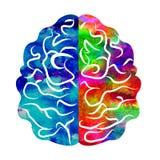Aquarelle Logo Modern Brain Sign de la psychologie humain Type créateur Icône dedans Concept de construction Société de marque Ar illustration libre de droits