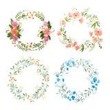 Aquarelle obraz robić dzicy kwiaty odizolowywający na białym tle kwiecisty wianek royalty ilustracja