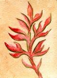 Aquarelle peignant la feuille de Rose Image libre de droits