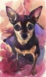 Aquarelle peinte à la main Terrier de jouet russe sur un fond abstrait rose illustration libre de droits