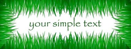 aquarelle ramowy trawy zieleni obrazek Zdjęcie Royalty Free