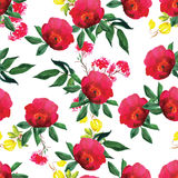 Aquarelle rose et modèle sans couture de vecteur de clématite Photo libre de droits