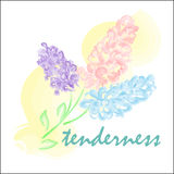 Aquarelle stylisée de fleurs lilas de ressort Image stock