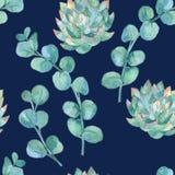 Aquarelleukalyptus Blätter und Succulent Stockfotografie
