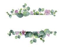 Aquarellfahne mit grünen Eukalyptusblättern, purpurroten Blumen und Niederlassungen Lizenzfreie Stockbilder