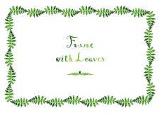 Aquarellfarn lässt (grünen) Rahmen des Vektors mit handgeschriebenem Text Lizenzfreies Stockfoto