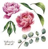 Aquarellflorenelementsatz Weinleseblätter, Eukalyptus, Beeren und Pfingstrosenblumen lokalisiert auf weißem Hintergrund Hand Lizenzfreies Stockfoto