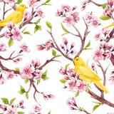 Aquarellfrühlings-Blumenmuster Stockbild