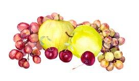 Aquarellfrüchte: Apfel, Traube, Kirsche watercolour Stockfotografie