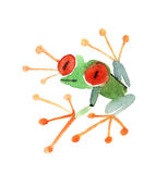 Aquarellfrosch Stockfotos