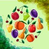 Aquarellfrucht auf einem grünen Hintergrund Stockbild