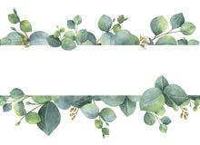 Aquarellgrüne Blumenkarte mit den Eukalyptusblättern und -niederlassungen des silbernen Dollars lokalisiert auf weißem Hintergrun Stockbild
