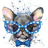 Aquarellhündchenillustration Zucht der französischen Bulldogge Stockfotografie