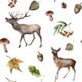 Aquarellherbst-Waldnahtloses Muster Handgemalte Verzierung mit Rotwild, Eberesche, Pilze, Eichel, Fall verlässt Stockfotos