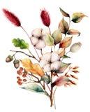 Aquarellherbstblumenstrauß mit Anlagen, Blumen und Beeren Handgemalte Baumwolle blüht, lagurus, Eichel, Blätter und lizenzfreie abbildung