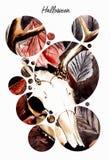 Aquarellillustration des Tierschädels stock abbildung
