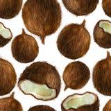 Aquarellillustration, Muster Kokosnüsse auf einem weißen Hintergrund stockfotos