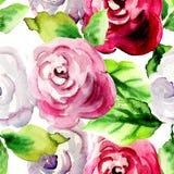 Aquarellillustration von Rosenblumen Stockbild