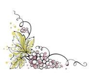 Aquarellillustration -- Weintraube Lizenzfreies Stockbild
