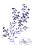 Aquarellillustrationsblume im einfachen Hintergrund Stockfotografie