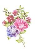 Aquarellillustrationsblume im einfachen Hintergrund Lizenzfreies Stockfoto