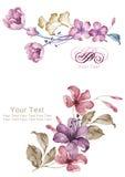 Aquarellillustrationsblume im einfachen Hintergrund Stockfoto