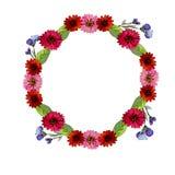 Aquarellillustrationsgrün verlässt und rosa, rote und blaue Blumen lizenzfreie abbildung