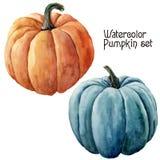 Aquarellkürbissatz Handgemaltes orange und blaues Gemüse lokalisiert auf weißem Hintergrund Herbstkürbisdruck für Design Stockfotos