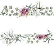Aquarellkarte mit Eukalyptusniederlassung und -rosen Handgemalter Blumenrahmen mit runden Blättern des silbernen Dollars Lizenzfreie Stockbilder