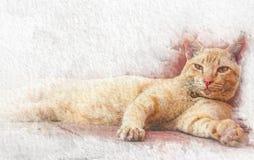 Aquarellkatze, die auf Boden mit abstrakter Farbe auf Weißbuchhintergrund schläft Malerei der schönen Grafik stock abbildung