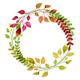 Aquarellkranz vom bunten Herbstlaub Vektor illustrati Stockfotos