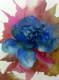 Aquarellkunsthintergrundzusammenfassung dalicate hellblaue Blumenrose einzeln Stockfotos