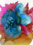 Aquarellkunsthintergrundzusammenfassung dalicate hellblaue Blumenrose einzeln Stockfotografie