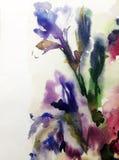 Aquarellkunstzusammenfassungs-Hintergrundfrische schöne Blumeniris blüht moderne strukturierte unscharfe Fantasie der nassen Wäsc Lizenzfreie Stockfotos