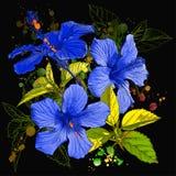 Aquarelllack - Hibiscusblume vektor abbildung