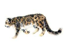 Aquarellleopard lizenzfreie abbildung
