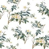 Aquarellmalerei des Blattes und der Blumen Stockbilder