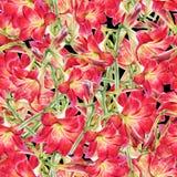 Aquarellmalerei des Blattes und der Blumen, nahtloses Muster Stock Abbildung