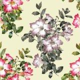 Aquarellmalerei des Blattes und der Blumen, nahtloses Muster auf beige Sahnehintergrund Lizenzfreies Stockfoto