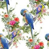 Aquarellmalerei mit Vögeln und Blumen, nahtloses Muster auf weißer Hintergrundillustration Stockbild