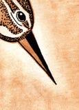 Aquarellmalerei Vogel ` s Kopf lizenzfreie abbildung