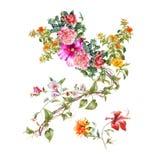 Aquarellmalerei von Blättern und von Blume, auf weißem Hintergrund Stockfotografie