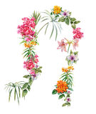 Aquarellmalerei von Blättern und von Blume Stockfotografie