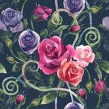 Aquarellmalereirosen in den verschiedenen Farben vereinbarten in einem Muster Lizenzfreie Stockfotografie
