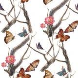 Aquarellmalereischmetterling und Blumen, nahtloses Muster auf weißem Hintergrund Stockbilder