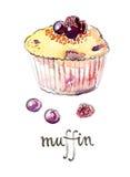 Aquarellmuffin mit Früchten stock abbildung