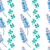 Aquarellmuster mit Lavendel Lavendel- und Kleemuster Vier Blatt-Klee shamrock Lizenzfreies Stockbild